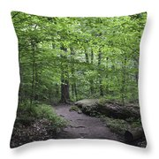 A Walk In The Catskills Throw Pillow