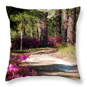 A Walk In The Springtime Woods Throw Pillow