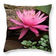A Waterlily's Grace Throw Pillow