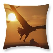 A White-tailed Eagle In Flight Throw Pillow