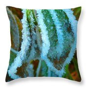 A White Trimmed Coat  Throw Pillow