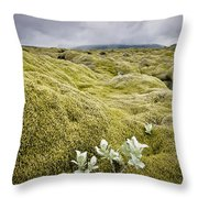 A White Wildflower Growing On A Rugged Throw Pillow