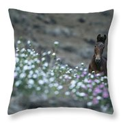 A Wild Horse On A Wildflower Covered Throw Pillow