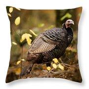 A Wild Turkey Hen In The Woods Throw Pillow