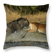 A Wildebeest And A Red Lechwe Leap Throw Pillow