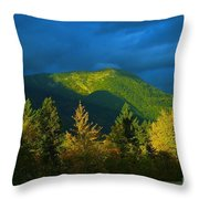 A Winding Autumn Road  Throw Pillow