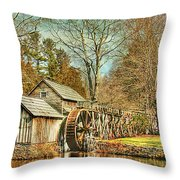 A Winters Day  Throw Pillow by Darren Fisher