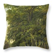 A Wooded Landscape  Throw Pillow