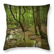 A Woodland Stream In Cades Cove No.472 Throw Pillow
