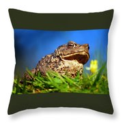 A Worm's Eye View Throw Pillow
