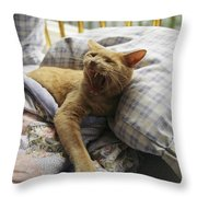 A Yawning Cat Wakes From A Nap Throw Pillow