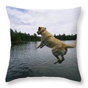 A Yellow Labrador Retriever Jumps Throw Pillow