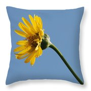 A Yellow Wildflower Throw Pillow