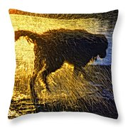Aargh Throw Pillow