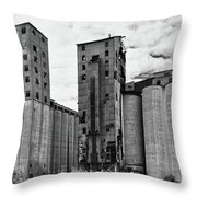 Abandoned 8834 Throw Pillow