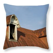 Abandoned Building Roof 1 A Throw Pillow