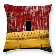 Abandoned Couch Throw Pillow