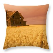 Abandoned Farm House, Wind-blown Durum Throw Pillow