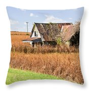 Abandoned Farmhouse In Field 4 Throw Pillow
