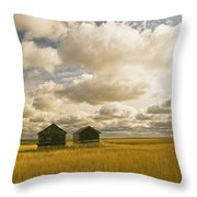 Abandoned Grain Bins With Hail Damaged Throw Pillow