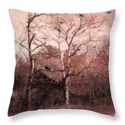 Abandoned Haunted Barn With Crows Throw Pillow