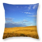 Abandoned House On The Prairies Throw Pillow