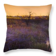 Abandoned Shack At Sunset Near A Creek Throw Pillow