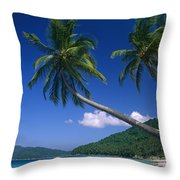 Abduls Beach Throw Pillow