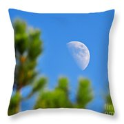 Above The Pines Throw Pillow