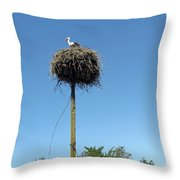 Above The Tree Tops Throw Pillow