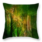 Abs 0260 Throw Pillow