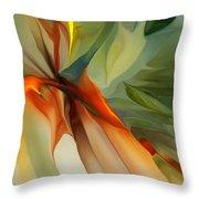 Abstract 021412a Throw Pillow