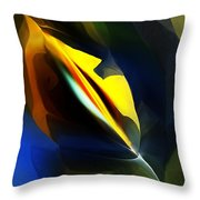 Abstract 051112 Throw Pillow