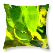 Abstract 1677 Throw Pillow