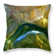 Abstract 1805 Throw Pillow
