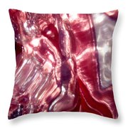 Abstract 2005 Throw Pillow