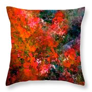 Abstract 269 Throw Pillow