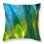 Abstract 3269 Throw Pillow