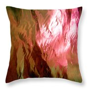 Abstract 3288 Throw Pillow