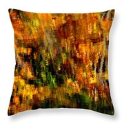 Abstract Babcock State Park Throw Pillow