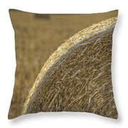 Abstract Bale Throw Pillow