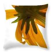 Abstract Black Eyed Susan IIi Throw Pillow