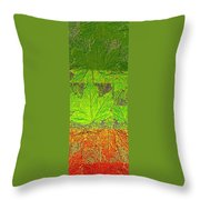 Abstract Fusion 38 Throw Pillow