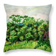 Abstract Landscape 6 Throw Pillow