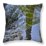 Abstract Palm Reflections Throw Pillow