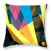 Abstract Sine L 16 Throw Pillow