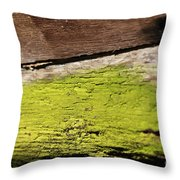 Abstract With Green Throw Pillow