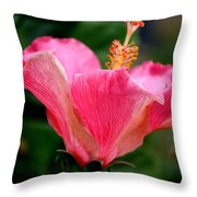 Abundantly Pink Throw Pillow
