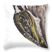 Acacia Pied Barbet Throw Pillow