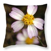 Aceitillo Flower Throw Pillow